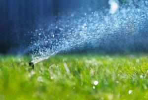 Sprinkler Blowout Boise, Sprinkler Turn On Boise